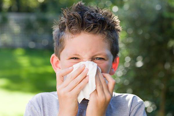 аллергия на попугаев у детей симптомы