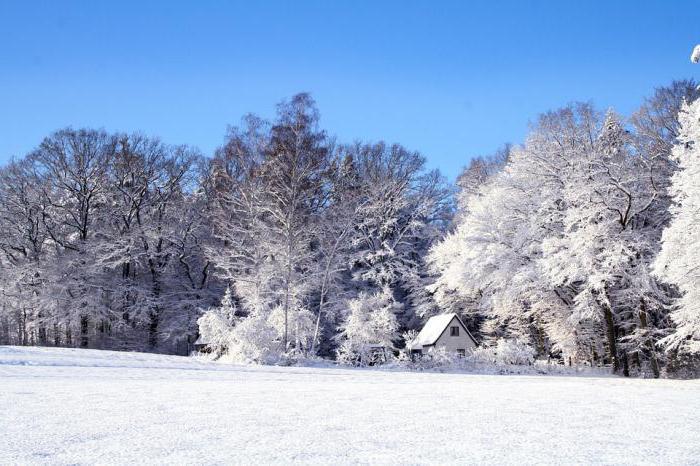 самая холодная зима за 100 лет