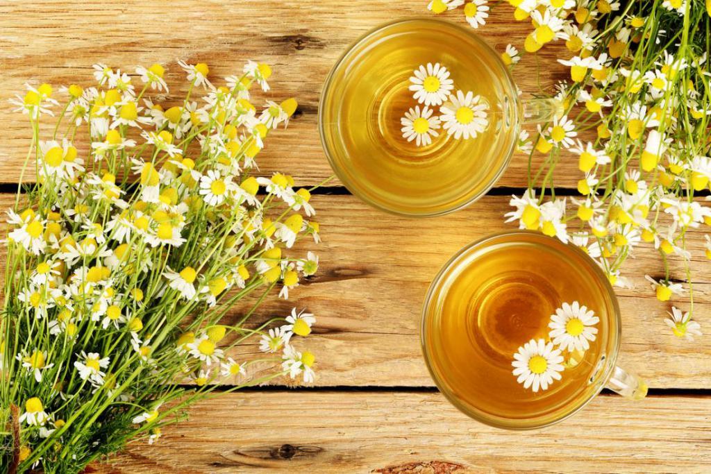 Трава ромашка лечебные свойства в гинекологии 3