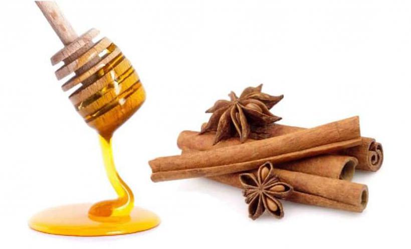 Мед и корица от холестерина и чистки сосудов: как принимать, рецепты