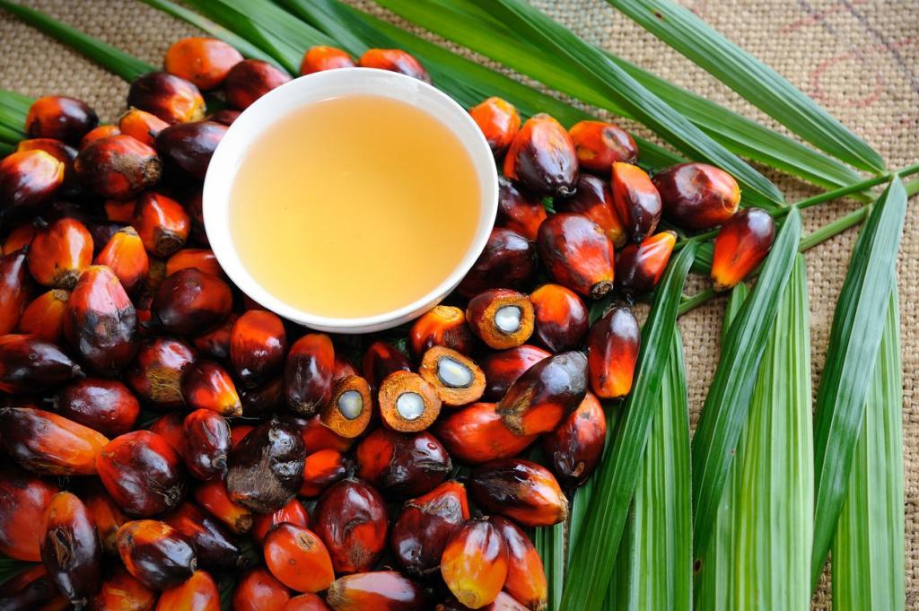 Вредно ли для человека пальмовое масло? Какой вред наносит пальмовое масло?