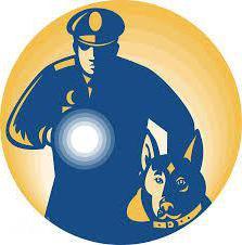 военизированная полиция выполняющая задачи