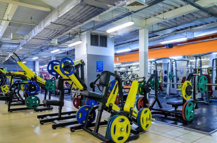 г Ярославль alex fitness тренера отзывы