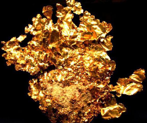 полезные ископаемые приморского края уголь