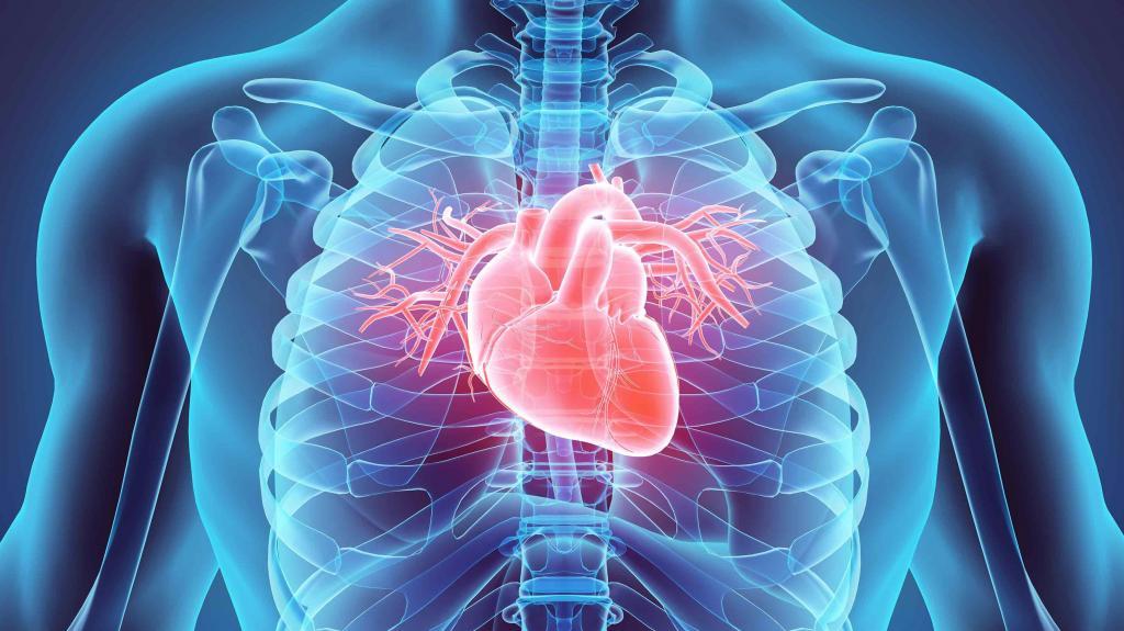 Обследование сердца методы