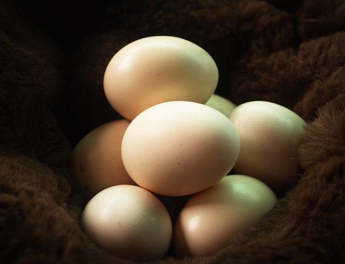 Яйца в скорлупках