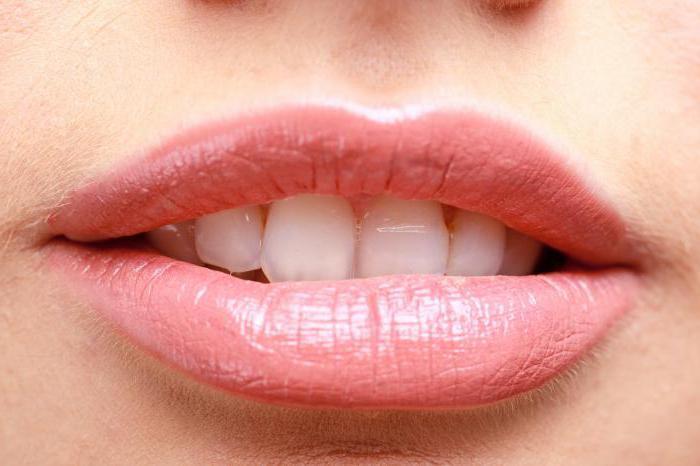 губы с гиалуроновой кислотой фото