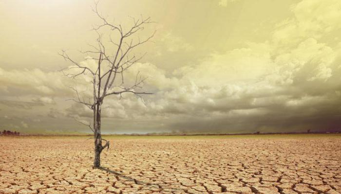 глобальное потепление миф или реальность