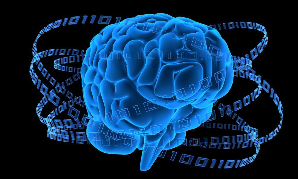 головной мозг с лентой из кадров