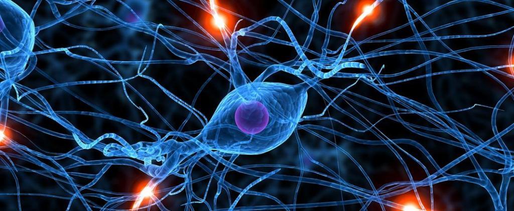 нейроны и импульсы между ними