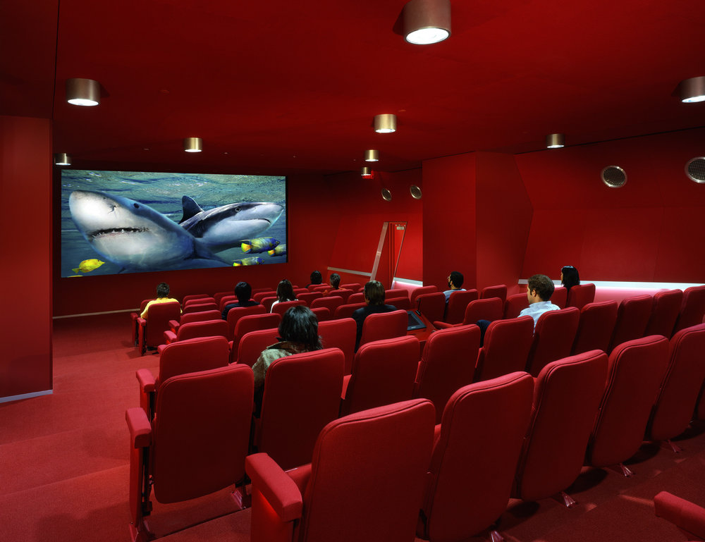Бизнес-план кинотеатра: порядок расчетов, определение окупаемости