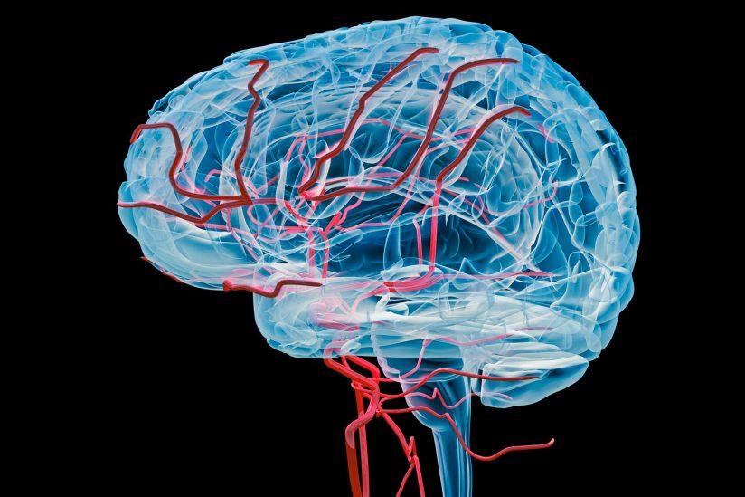 Проблемы с сосудами головного мозга: симптомы и лечение