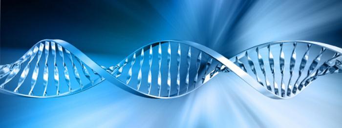 Тета хилинг: новая технология исцеления