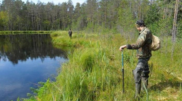 рыбалка на озере без платная