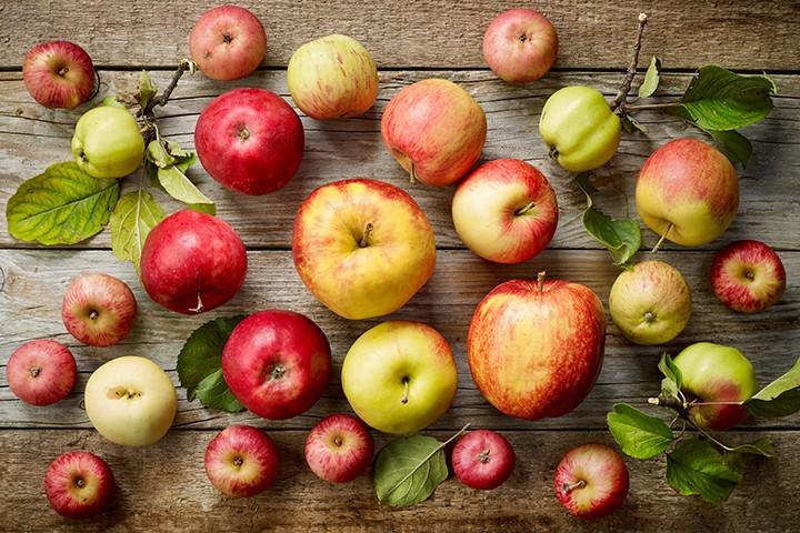 Изжога от яблок: причины возникновения и лечение