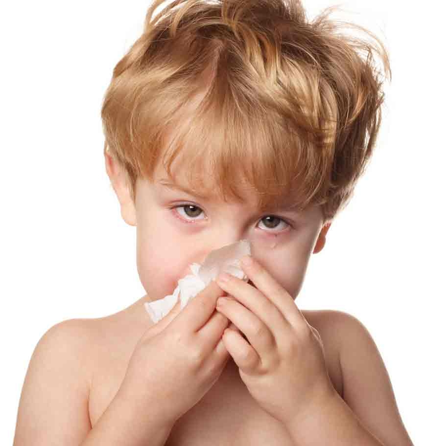 Увеличение моноцитов в крови у ребенка: причины и лечение. О чем говорят повышенные моноциты в крови у ребенка