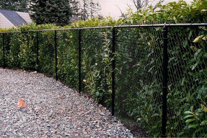 Забор из пластиковой сетки фото