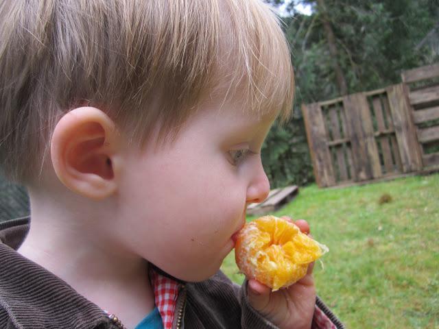 Аллергия на мандарины у ребенка