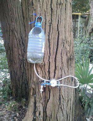 умывальник из пластиковой бутылки своими руками особенности