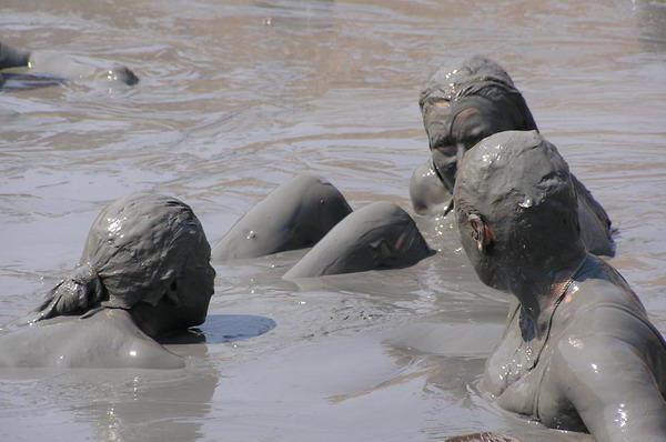 грязевое озеро в голубицкой отзывы