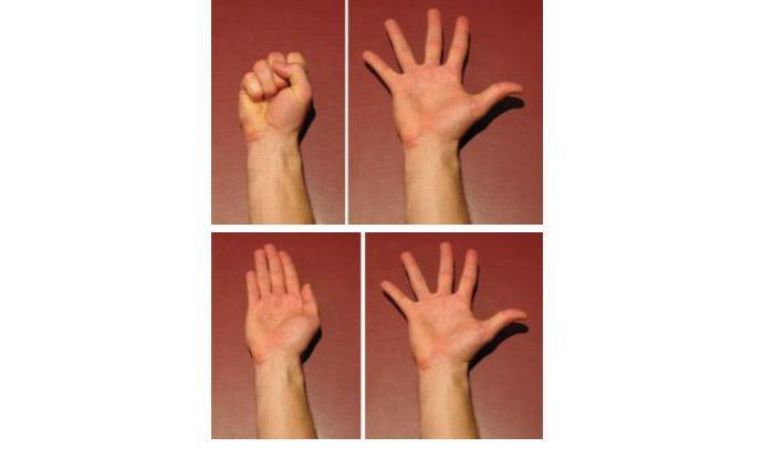Что Сделать Чтоб Похудели Пальцы На Руках. Что делать, чтобы похудели кисти и пальцы рук?