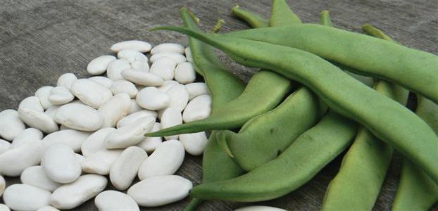 фасоль обыкновенная семена