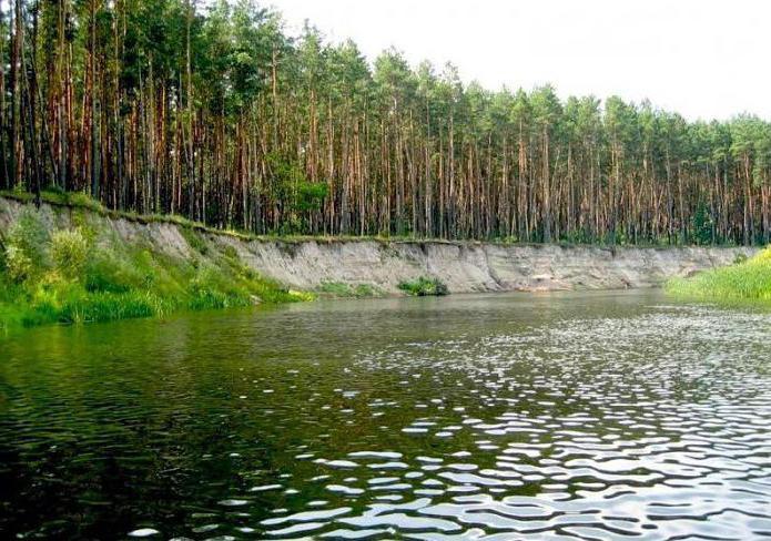 реки Курской области куда впадают