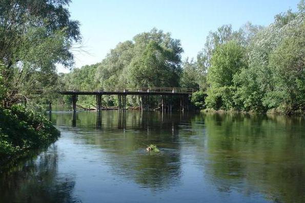 река Псел Курская область