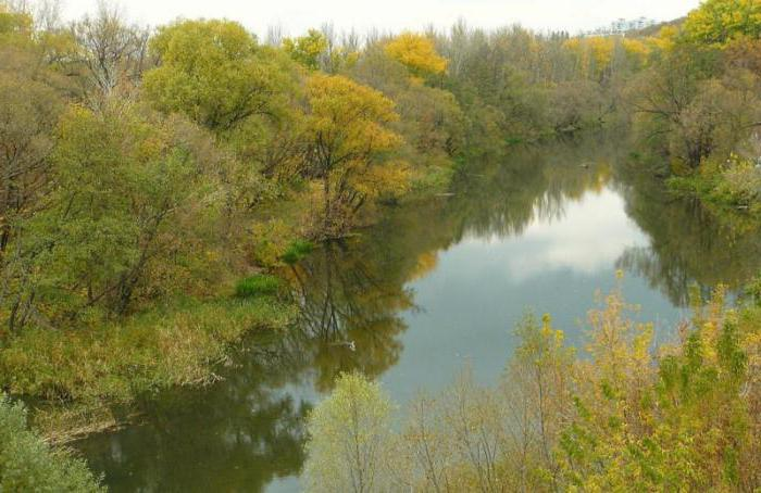 река Тускарь Курской области