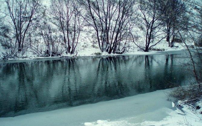 река Сейм Курская область