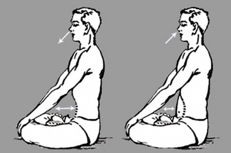Эффективные упражнения для зарядки по утрам