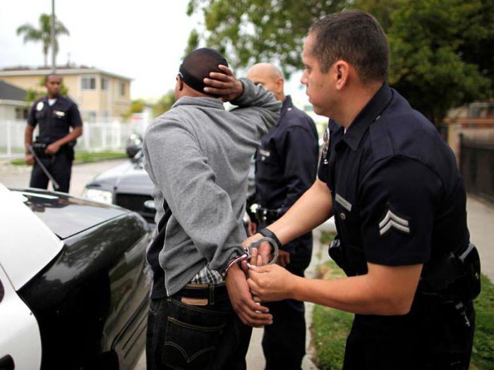 виды преступлений и наказаний по ук рф