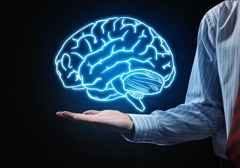 порок развития головного мозга причины