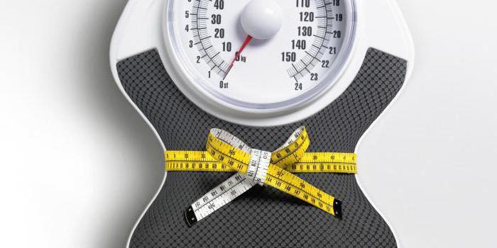 режим дня и питания для похудения