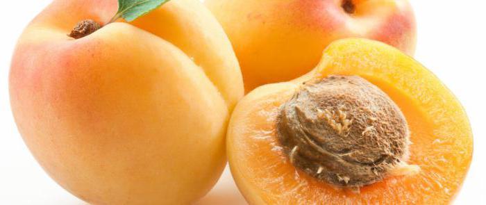 абрикос полезные свойства и противопоказания