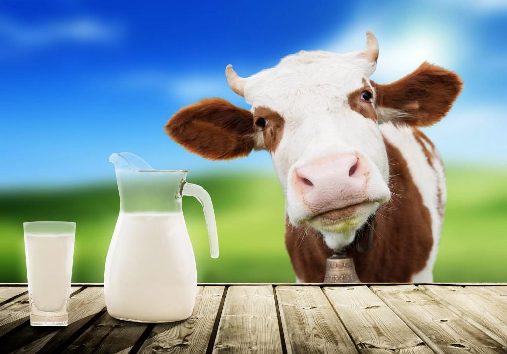 Отравление молоком: симптомы, первая помощь, лечение
