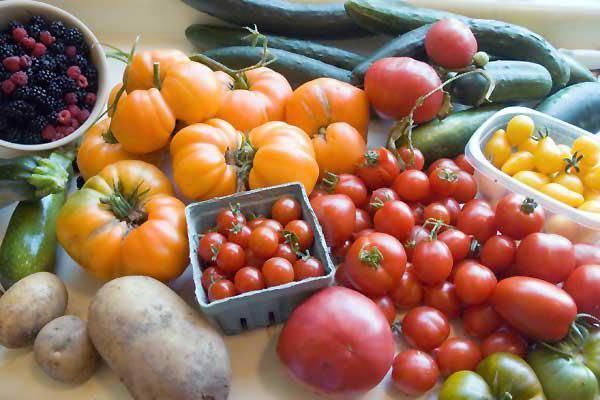 совместимые и несовместимые овощи