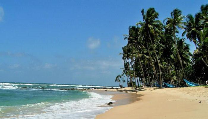 Погода на Шри-Ланке по месяцам / прогноз погоды на август ...
