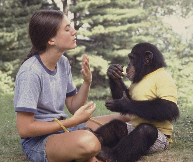 Обучение обезьян речи