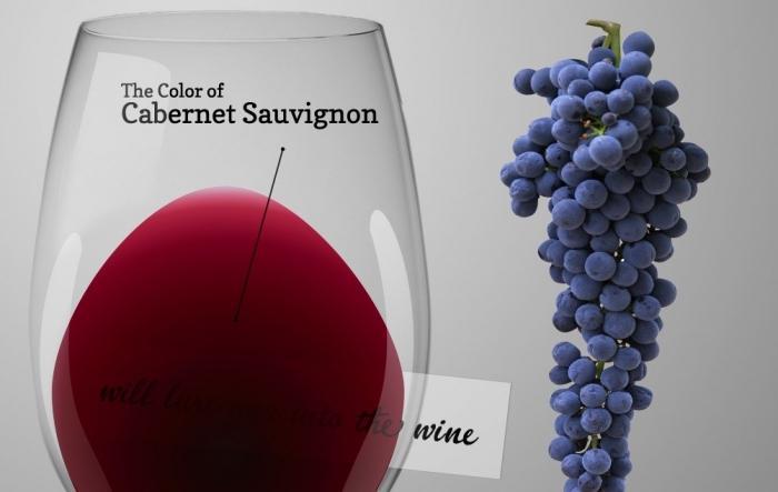 Каберне Совиньон вино