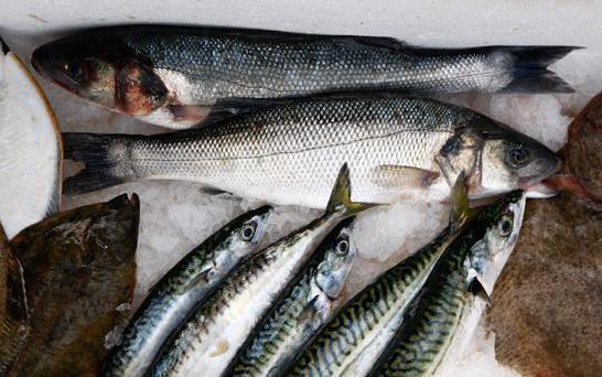Рыба навага нет сексульной активности