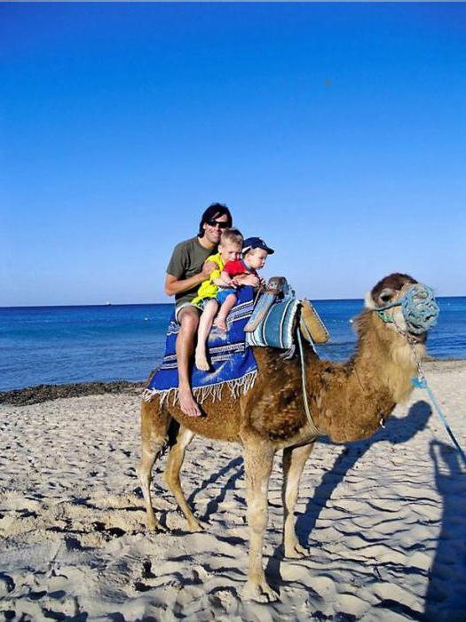 тунис джерба отдых с детьми