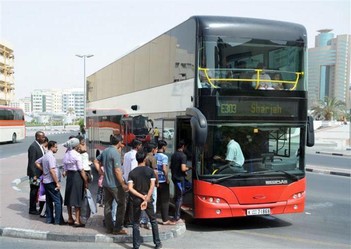 Автобус шарджа дубай