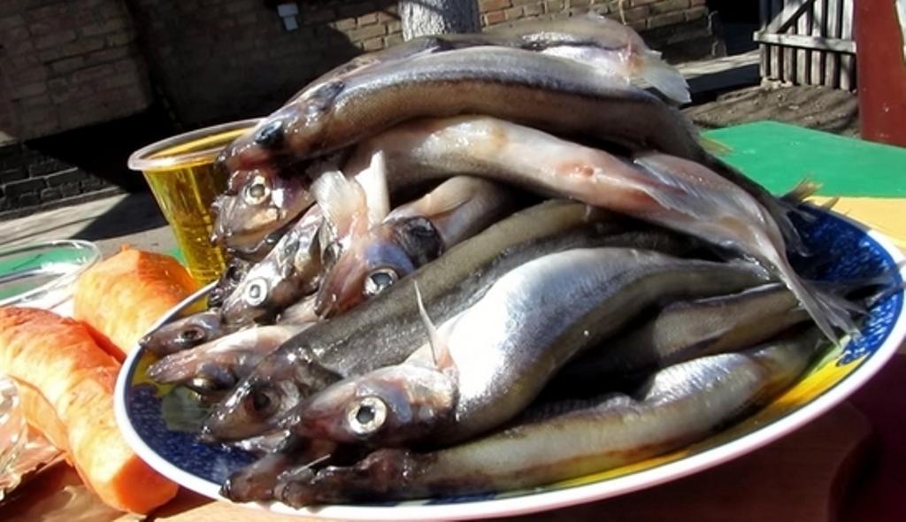 Как выбирать рыбу для шпрот