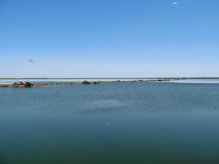 Озеро горькое алтайский край