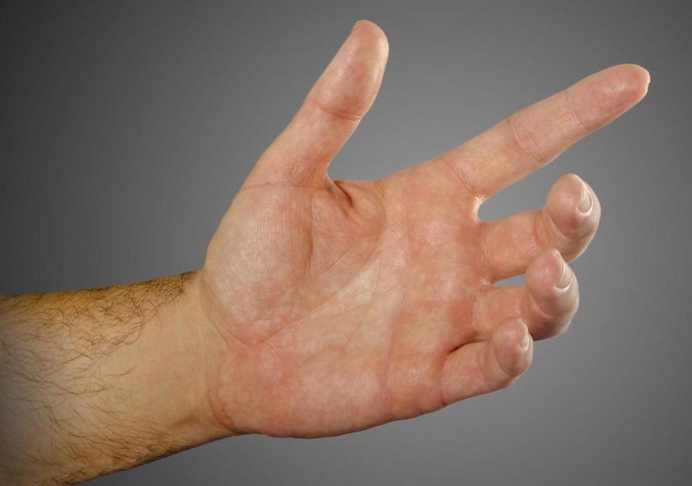 смотреть картинки кисти рук как