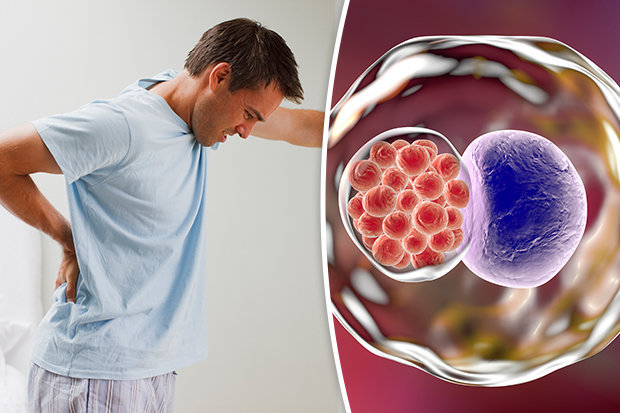 Как влияют хламидии на сперму вобщем