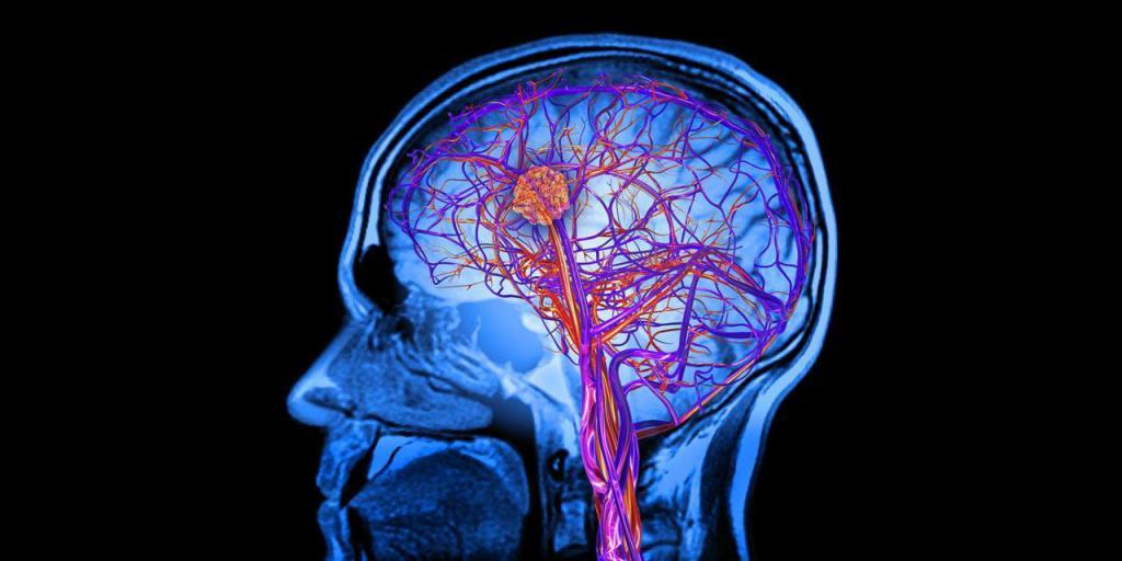 как насытить мозг кислородом в домашних