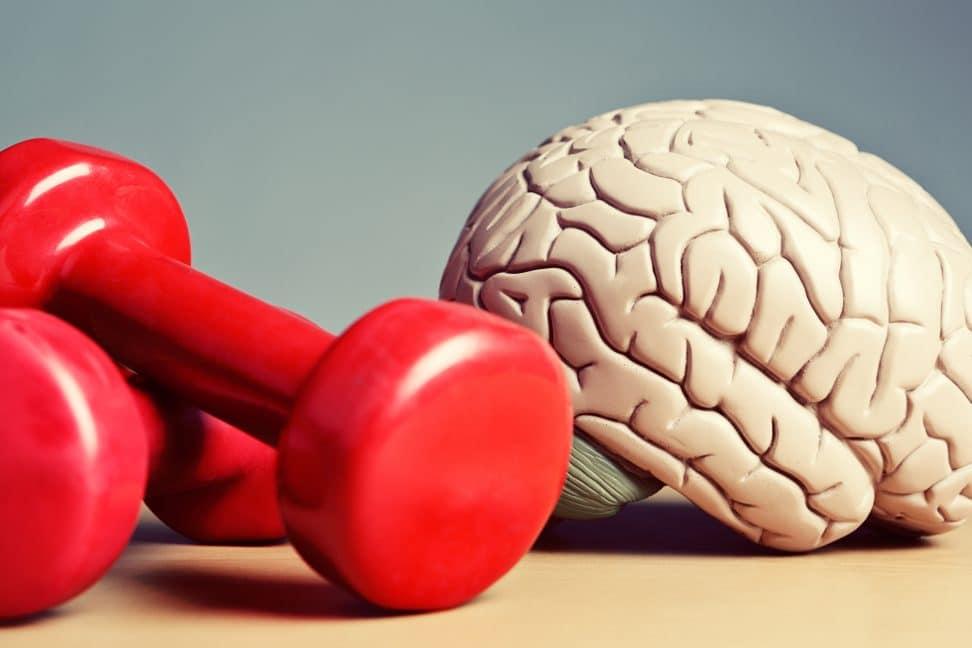 как насытить головной мозг кислородом