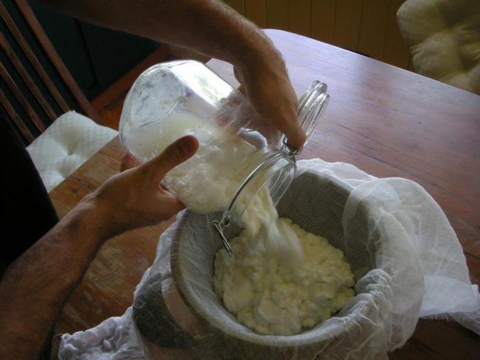 Как приготовить брынзу из коровьего молока